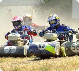The British Lawn Mower Racing Associaton Racing Group